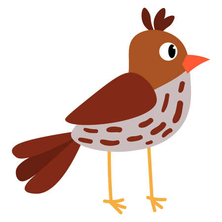 Cute cartoon Sparrow in flat style isolated on white background. Little bird. Vector illustration.