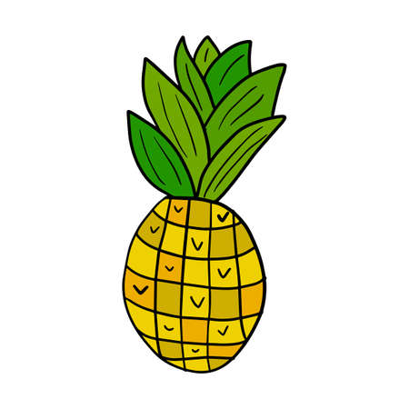 Cute hand drawn pineapple isolated on white background. Cartoon pineapple.