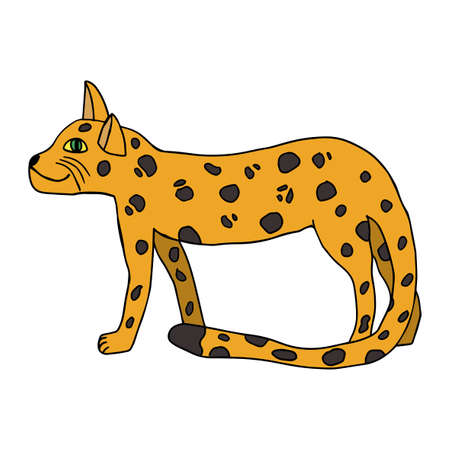 Cartoon doodle leopard in childlike style isolated on white background. Wild African cat.
