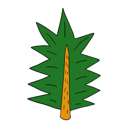 Cartoon doodle linear spruce tree isolated on white background. Forest hand drawn icon.