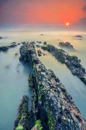Sunrise scene with mossy on the rocks photo