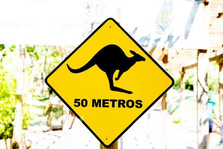 Kangaroos sign, kangaroos warning sign nearby. Stockfoto