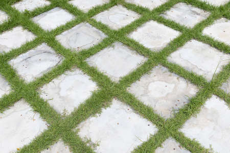 high angle view of square grid block concrete stone or marble tile walkway pavement floor with green grass in garden, Use for background and texture.