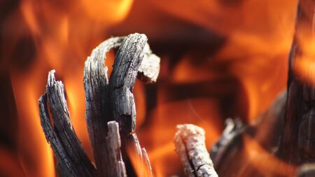 Burning Piece Of Wood In Fire Flames. Imagens