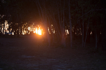 phu: Siluate Sunset  over Phu Kradung , Thailand Stock Photo