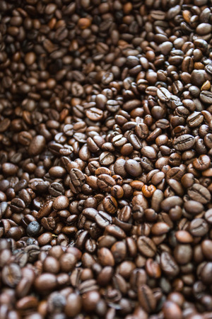 kopi: Kopi Luwak coffee