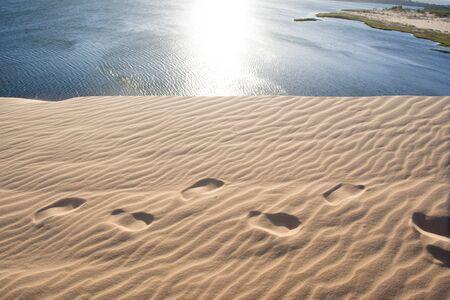 White sand dune in Mui Ne, Vietnam 写真素材