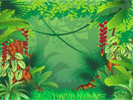이국적인 열대 숲