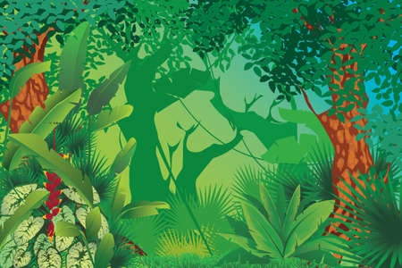 tropical garden: exotic tropical forest