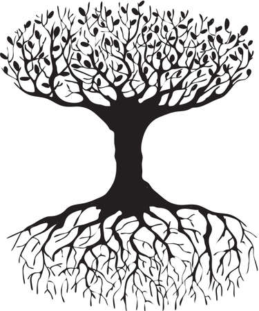 tree roots: Tree of life Illustration