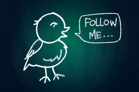 Follow Me said a Bird, Social Media Concept drawn with Chalk on Blackboard photo