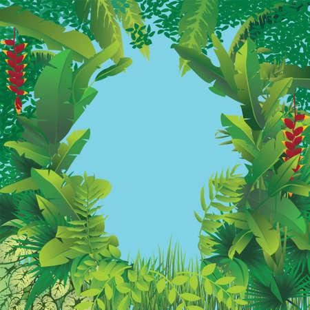ilustración vectorial de la exótica selva tropical con el cielo azul en el medio