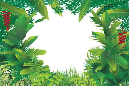 途中で白い空白のスポットとエキゾチックな熱帯林のベクトル イラスト  イラスト・ベクター素材