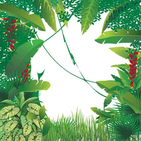 backlit: vector illustration of exotic tropical forest, blank spot on the middle Illustration