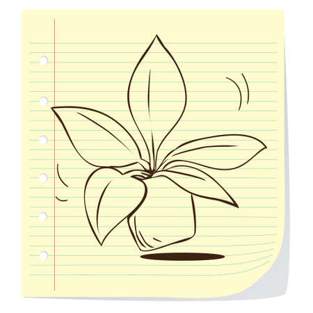black and white leaf: Vector illustration of potted plant in doodle style