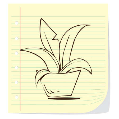 potted plant cactus: Vector illustration of potted plant in doodle style