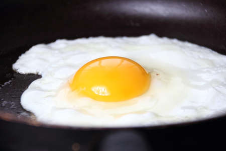 albumin: Food photography closeup photo of bullseye egg fried in a pan