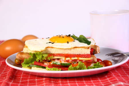 food photography: Food photography closeup photo of ham and egg sandwich