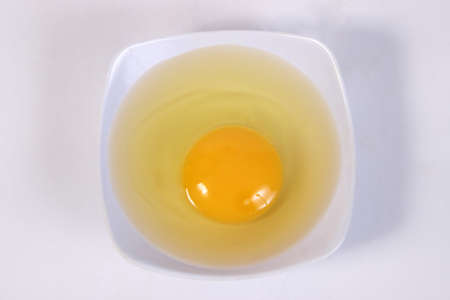 albumin: Food photography closeup photo of raw egg