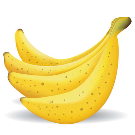 gradient mesh: illustration of spotted banana fruits, realistic gradient mesh design, isolated on white