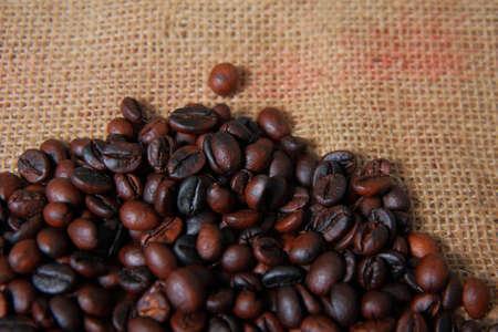 gunny: Dark roasted coffee beans on gunny sack texture