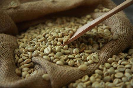 ejotes: los granos de café sin procesar con la cucharada de madera en saco de yute