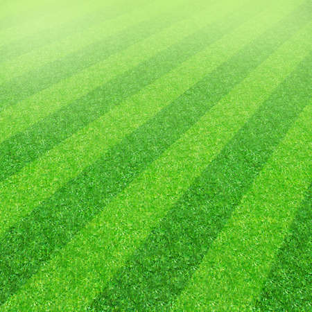 Striped soccer football grass field texture, background with copy space Stock Photo