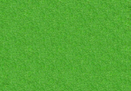 Top view image of green grass course field texture for background