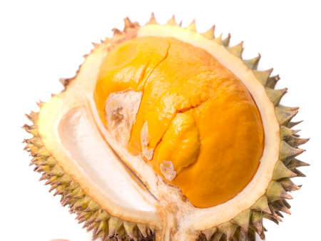 Durian Lai, Durio Kutejensis, yellow durian of Borneo Kalimantan also known as pulu, nyakak, pekan, pampakin or pekawai, native fruit of Malaysia and Indonesia Banco de Imagens