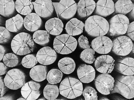 Close up image of grunge old round wooden plank texture, abstract textures for background in black and white monochrome