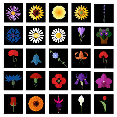 calendula flower: Collection of flat flower icons.