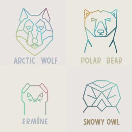gronostaj: Kolekcja wzorów wielokątnych gradientu arktycznego wilka, niedźwiedzia polarnego, Sowa śnieżna i gronostaje.