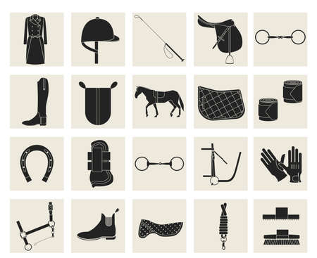 reins: Collection of horseback riding gear and riding attire.
