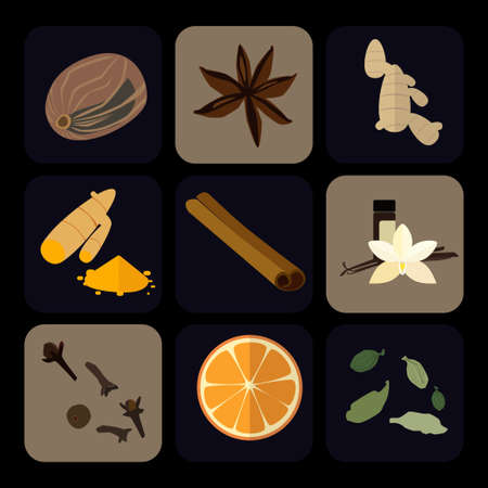 Flat icons set of popular spices. Ginger, orange, anis star, gloves.