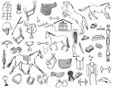 stirrup: Hand drawn doodles of horse back riding equipment, horse gaits and grooming kit.