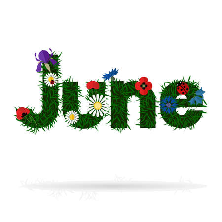 The word June with grass texture and flat icons of chamomile, iris flower, poppies and lady bugs. Illustration
