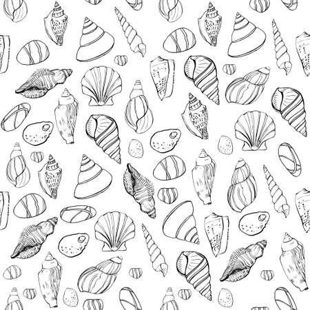 Seamless pattern with hand drawn seashells scattered on white background.