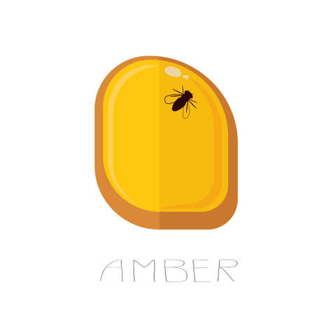 Illustration of an amber with a fly inside Ilustração