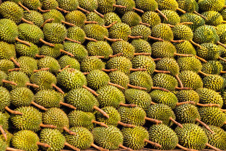 The Texture of Durian in the market