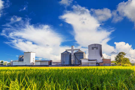 rice mill: Landscape shot plant rice mill and green rice field. Stock Photo