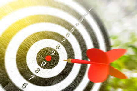 Red arrows hitting the target, metaphor to target marketing or target arrow concept, Selective focus, 3D Render