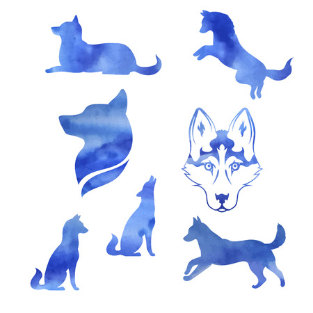 Watercolor dog husky icons and silhouettes. Set of illustrations in different poses.
