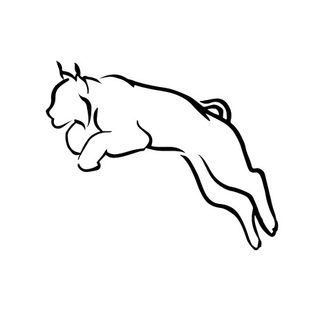 lynx: Logo lynx vector. Graphic jumping wild cat, Illustration