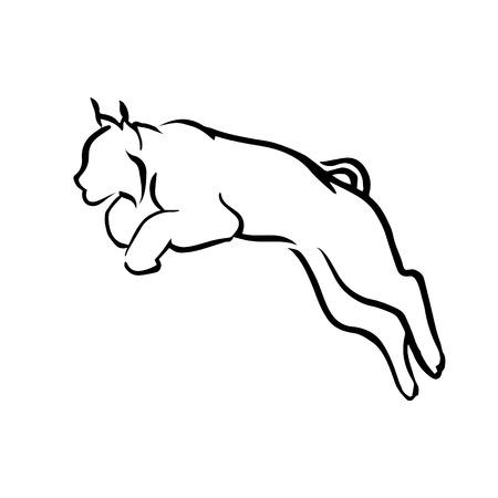 Logo lynx vector. Graphic jumping wild cat, Illustration
