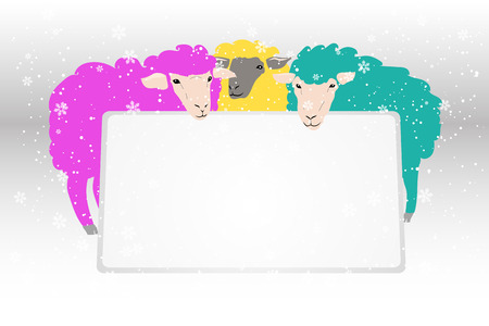 sheeps: Vector banner with blue and pink sheeps. Illustration with animals. Illustration