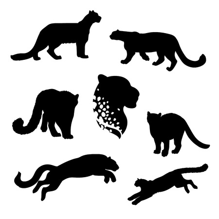Snow leopard set of silhouettes vector. Collection of animal icons.