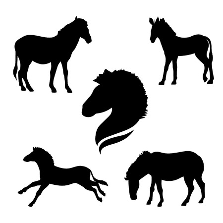 horse silhouette: Zebra set of silhouettes vector. Collection of animal icons.