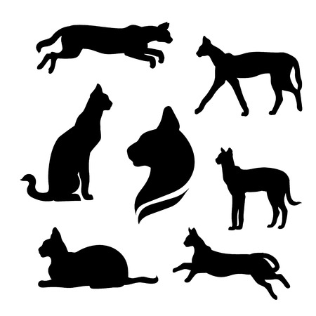 black cat silhouette: Serval set of silhouettes vector. Collection of animal icons.