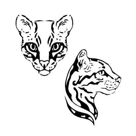 Ocelot vector set of graphic muzzles vector