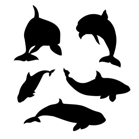 Killer whale set of silhouettes vector. Collection of animal icons. Illustration